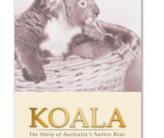 Barrett's Koala
