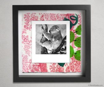 Koala Party Shadow Box 10-by-10 Inches 1