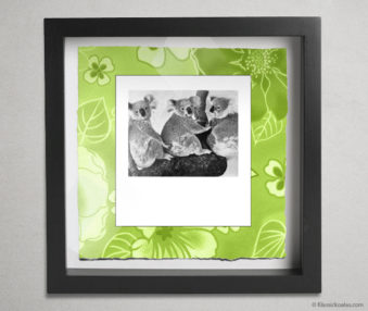 Koala Party Shadow Box 10-by-10 Inches 14