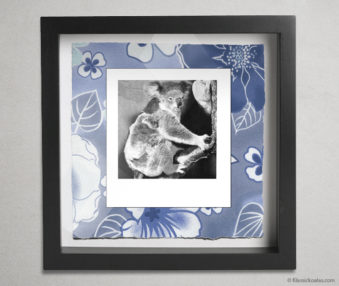 Koala Party Shadow Box 10-by-10 Inches 28