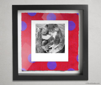 Koala Party Shadow Box 10-by-10 Inches 29