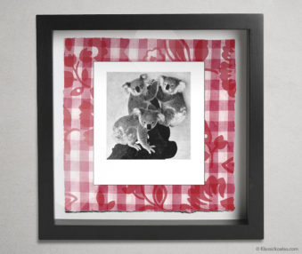 Koala Party Shadow Box 10-by-10 Inches 32