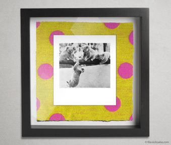 Koala Party Shadow Box 10-by-10 Inches 33