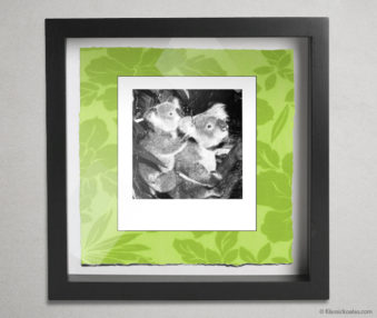 Koala Party Shadow Box 10-by-10 Inches 34
