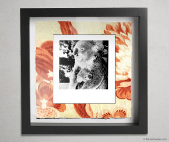 Koala Party Shadow Box 10-by-10 Inches 37