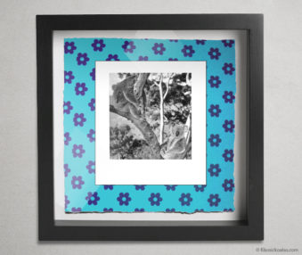 Koala Party Shadow Box 10-by-10 Inches 40