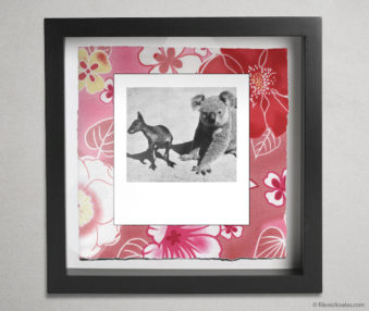 Koala Party Shadow Box 10-by-10 Inches 5