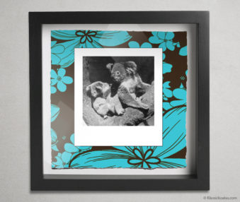 Koala Party Shadow Box 10-by-10 Inches 6