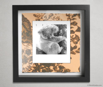 Koala Party Shadow Box 10-by-10 Inches 8