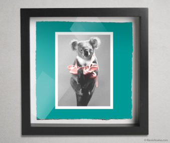 Koala Stars Shadow Box 10-by-10 Inches 1