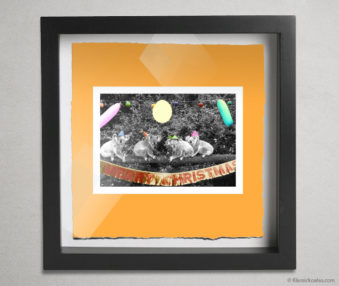 Koala Stars Shadow Box 10-by-10 Inches 30