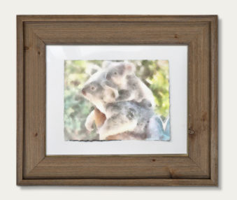 Koala Watercolor Painting 11-by-14 Barnwood Frame H 2