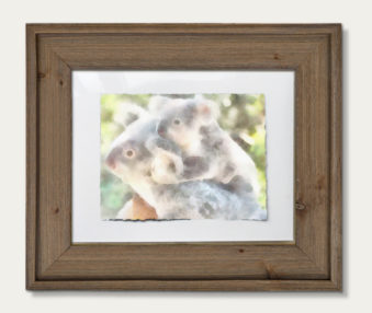 Koala Watercolor Painting 11-by-14 Barnwood Frame H 3