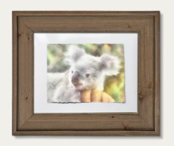Koala Watercolor Painting 11-by-14 Barnwood Frame H 6