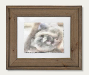 Koala Watercolor Painting 11-by-14 Barnwood Frame H 8