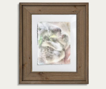 Koala Watercolor Painting 11-by-14 Barnwood Frame V 12