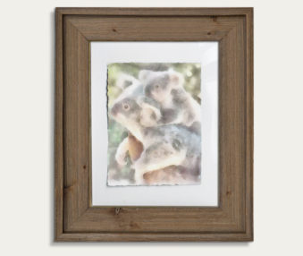 Koala Watercolor Painting 11-by-14 Barnwood Frame V 14