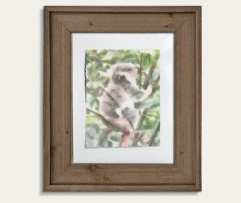 Koala Watercolor Painting 11-by-14 Barnwood Frame V 19