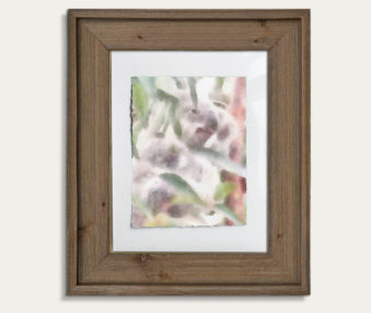 Koala Watercolor Painting 11-by-14 Barnwood Frame V 2