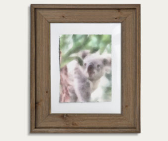 Koala Watercolor Painting 11-by-14 Barnwood Frame V 21