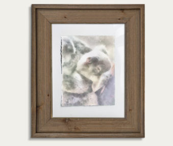 Koala Watercolor Painting 11-by-14 Barnwood Frame V 5