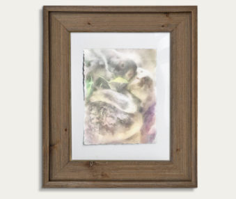 Koala Watercolor Painting 11-by-14 Barnwood Frame V 7