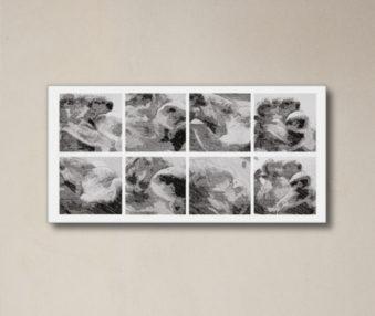 News Koalas 10-by-20 Inch Canvas Print 15