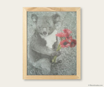 Pop Art Koalas Encaustic Painting 8-by-10 Inch Frame V 2