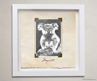 Valentine Koalas Shadow Box 10-by-10 Inches 20
